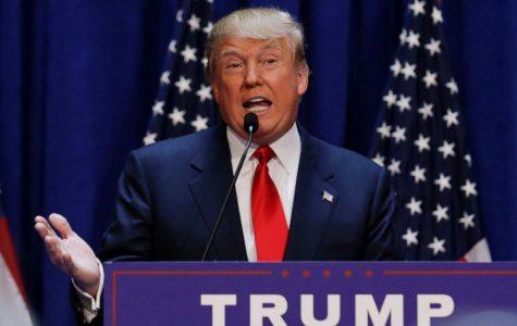 The Great Trump Stump