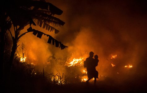 The Indonesian Fire Crisis