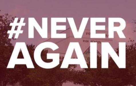 #NeverAgain?