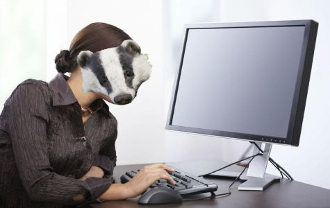 Anonymous Badger