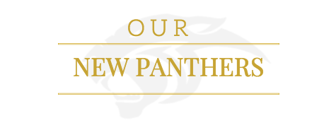 Our New Panthers!