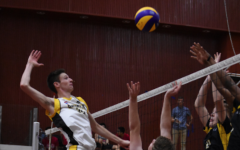 2017 Boys Volleyball IASAS Recap